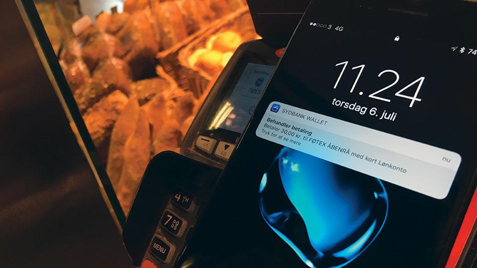 skift iphone 4 skærm